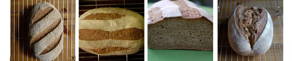 Bread composite